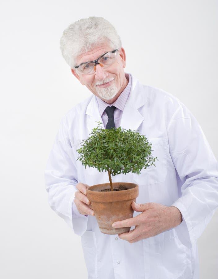 rymma växtforskare hög royaltyfri foto