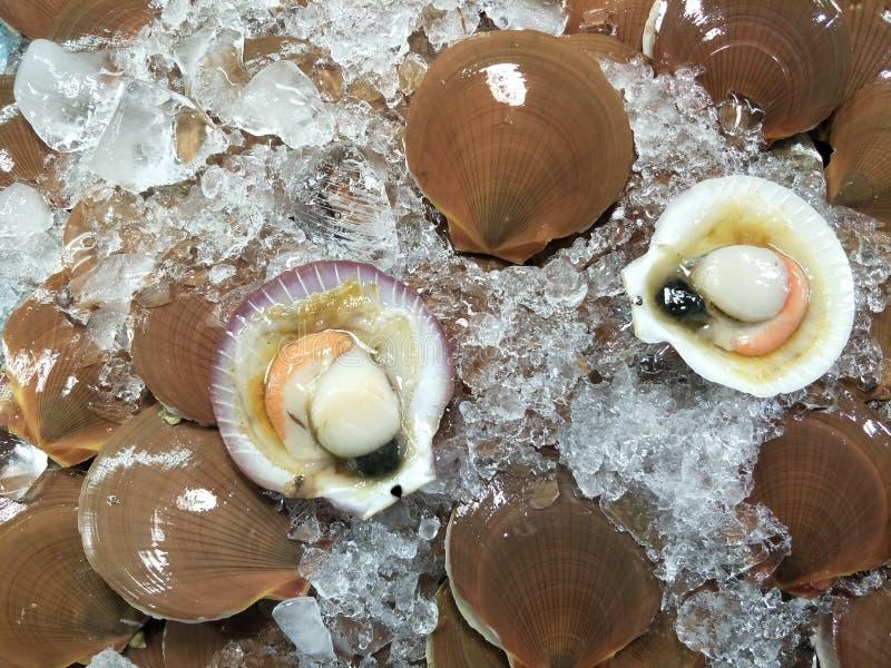 rynek świeżych owoców morza w pattaya tajlandia fotografia stock