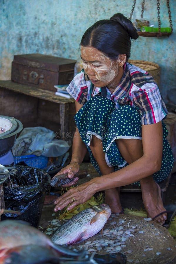 Rynek w shanu stanie Myanmar fotografia stock