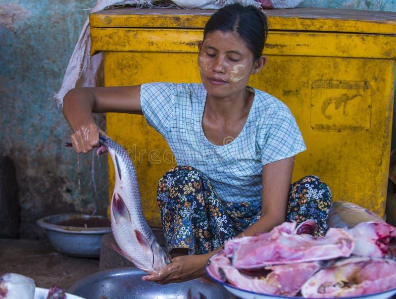 Rynek w shanu stanie Myanmar obraz stock