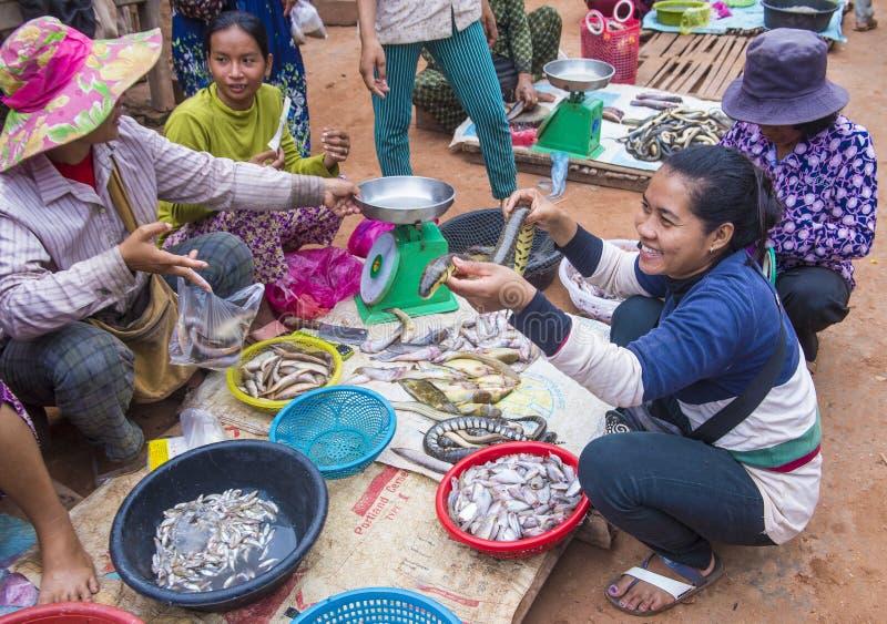 Rynek w Siem Przeprowadza żniwa Kambodża obraz royalty free