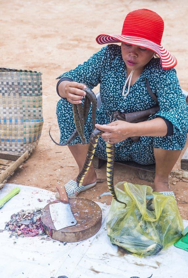 Rynek w Siem Przeprowadza żniwa Kambodża fotografia stock