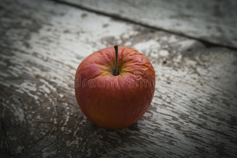 rynkat äpple royaltyfri bild