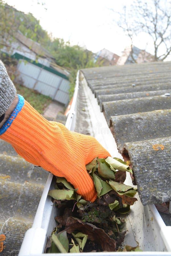 Rynnowa liścia usunięcia fotografia Dachowa rynna z spadać liśćmi Podeszczowa rynna z dacharz ręki czyści fotografią obrazy stock