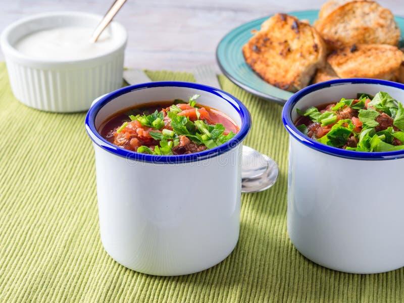 Rysk borscht för rödbetasoppa i emalj rånar royaltyfri fotografi