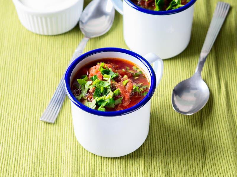 Rysk borscht för rödbetasoppa i emalj rånar fotografering för bildbyråer