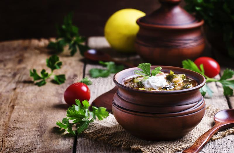 Rysk kokkonst: Solyanka - soppa från olika sorter av kött royaltyfri fotografi