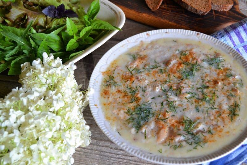 Rysk lantlig kokkonst: köttaladåb på den vita plattan med örter på den sjaskiga tabellen fotografering för bildbyråer
