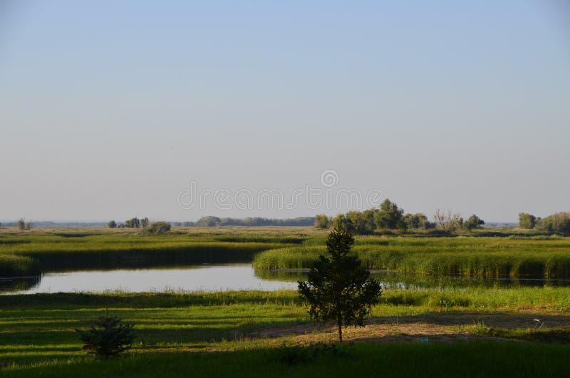 Rysk natur, flod royaltyfri fotografi