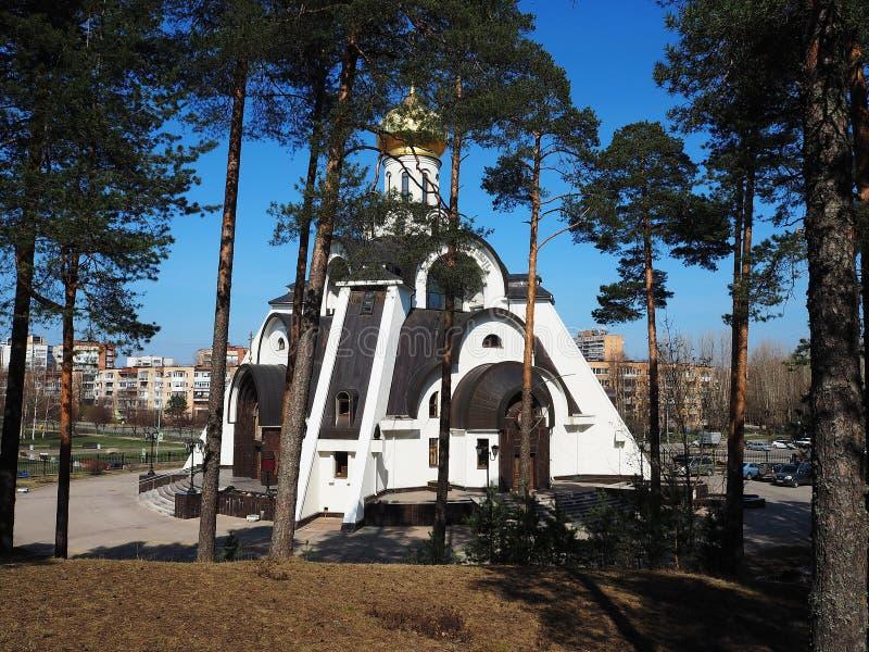 Rysk ortodoxkyrka H?rlig kyrka som lokaliseras i detaljer och n?rbild f?r en pinjeskog royaltyfri bild