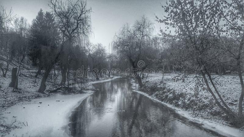 Rysk sylt fotografering för bildbyråer