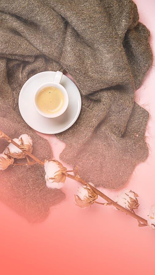 Rysk woolen sjal med koppen kaffe med hjärtainsidan och bomullsfilial på färg av den bo korallbakgrunden för år 2019 arkivfoto