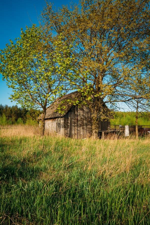Ryskt antikt träbyhus i Ryssland i sommar, vår arkivbilder