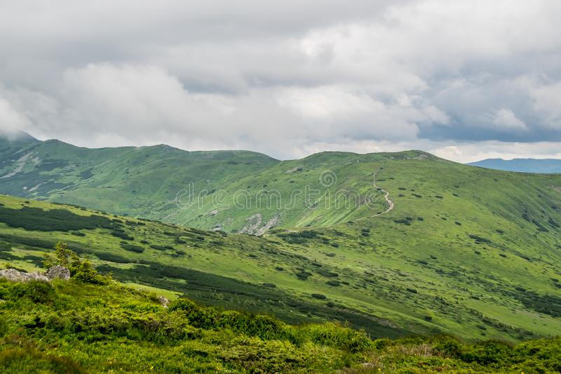 Ryssland Altai berg royaltyfria foton