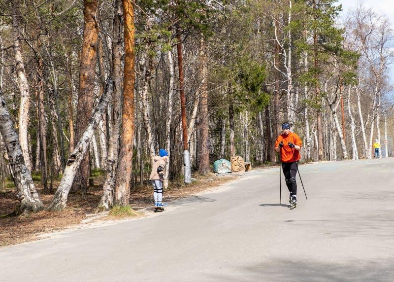 Ryssland Monchegorsk - Maj 2019 Utbildning av en idrottsman nen p? rullskateborad?karna Biathlonritten p? rullskidorna med skidar royaltyfria foton