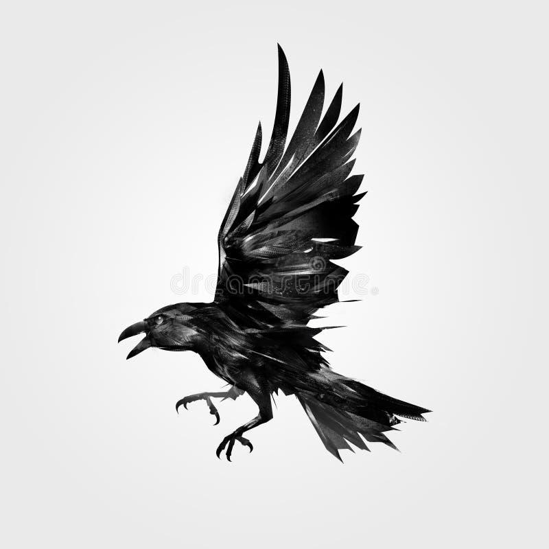 Rysujący odizolowywający napadanie ptaka kruk ilustracja wektor