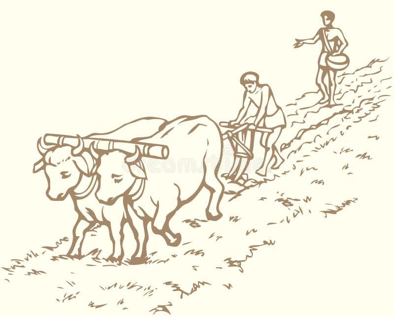 rysuje tła trawy kwiecistego wektora Pierwotny rolnictwo Chłop taktujący pole ilustracja wektor