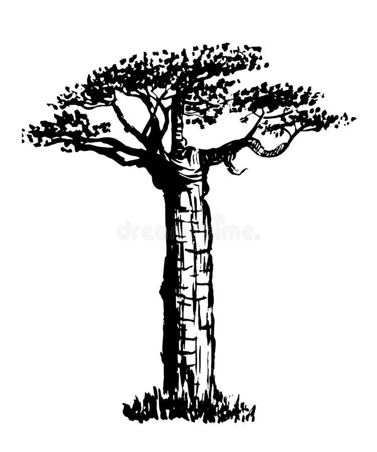 Rysunkowej starej butelki nakreślenia drzewna ilustracja ilustracja wektor