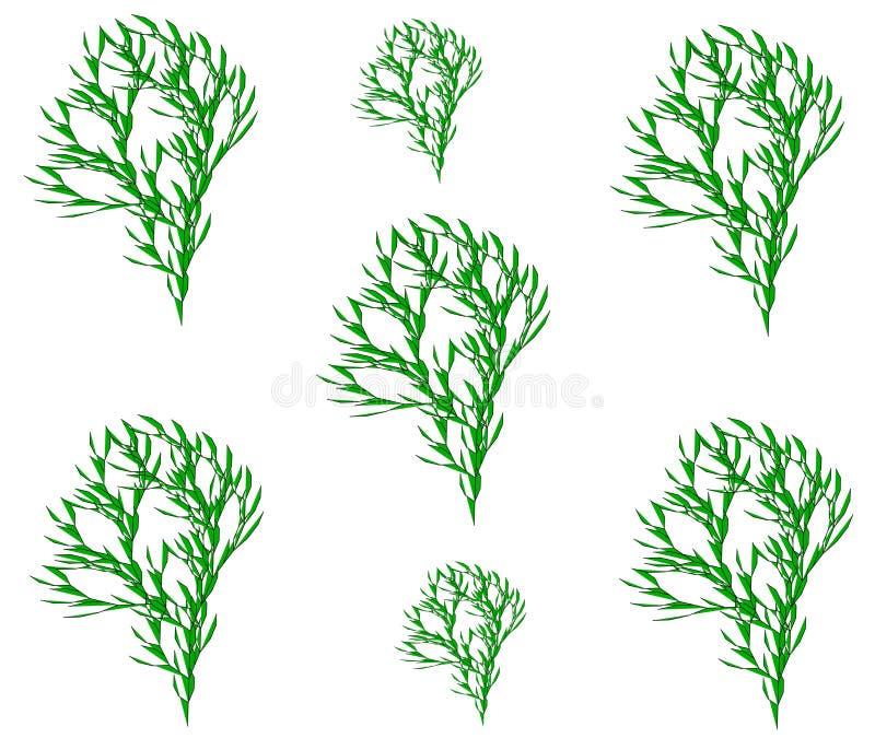 Rysunkowy drzewo, flanca royalty ilustracja
