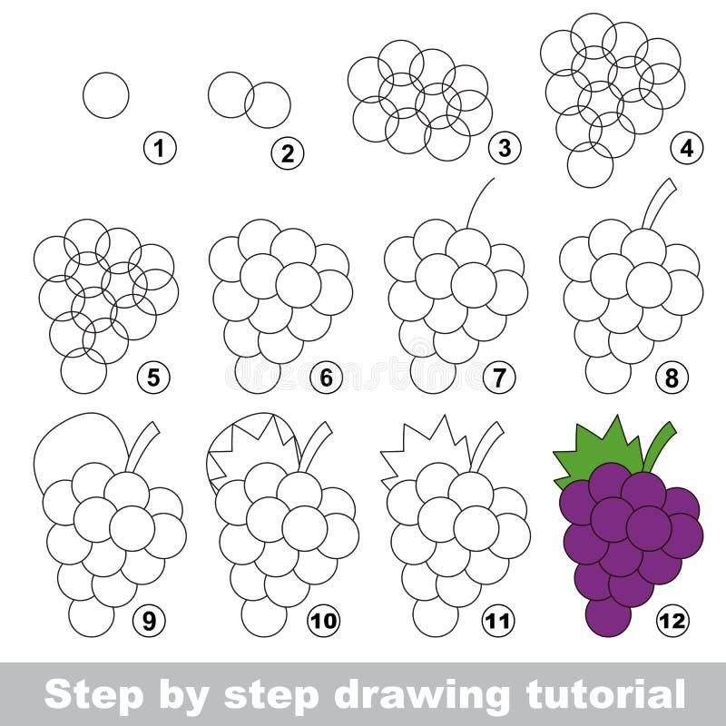 Rysunkowy tutorial dojrzałych winogron, ilustracji