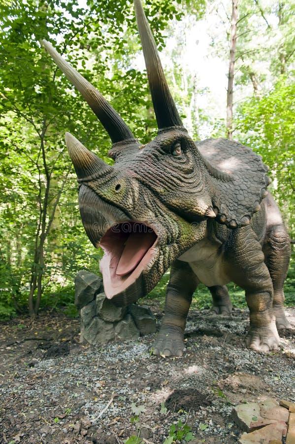 ryta triceratops royaltyfri fotografi