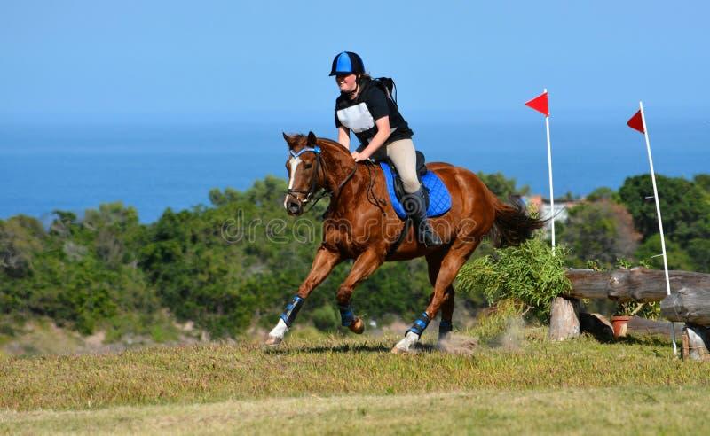 Ryttare och häst för argt land arkivfoton