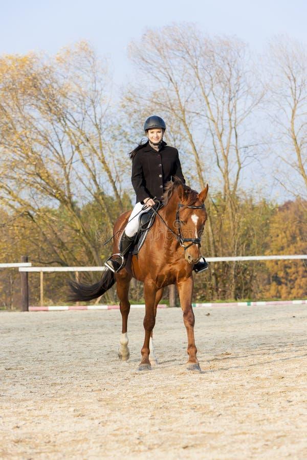 Ryttare på hästrygg royaltyfria bilder