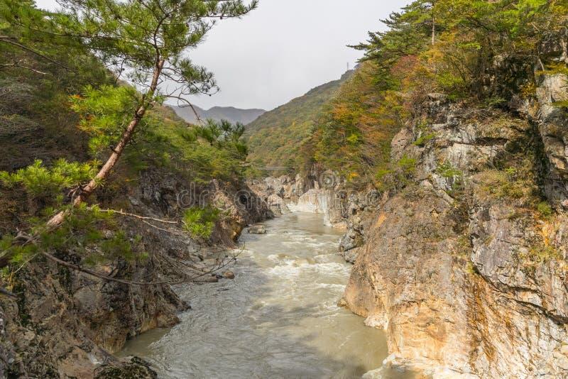 Ryuou dolina, strumień Kinugawa rzeka fotografia stock