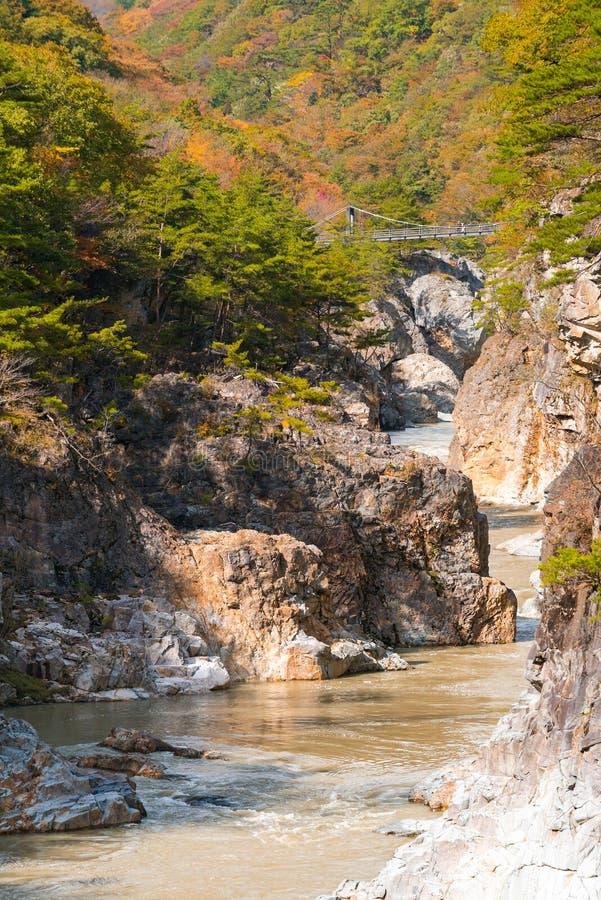 Ryuyo Gorge canyon Nikko Japan royalty free stock images