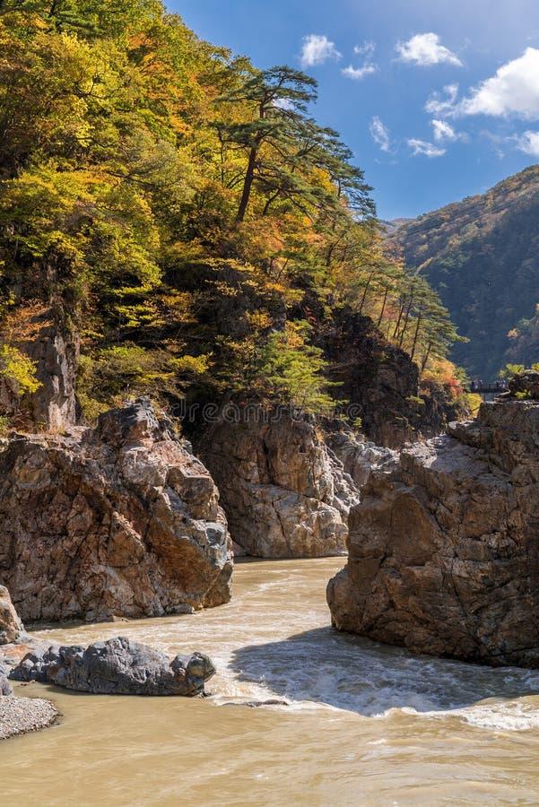 Ryuyo Gorge canyon Nikko Japan royalty free stock photos