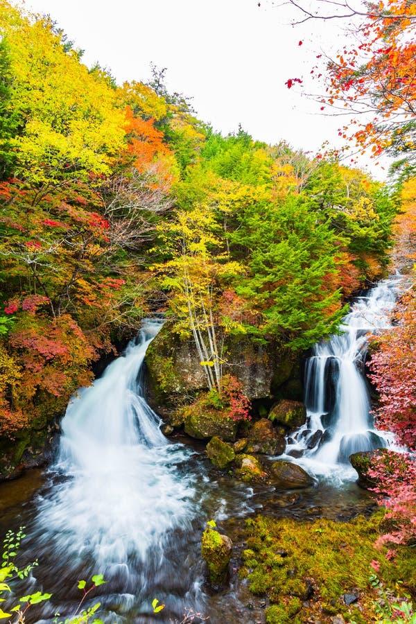 Ryuzu Spada w jesień sezonie przy Nikko, Japonia zdjęcie stock