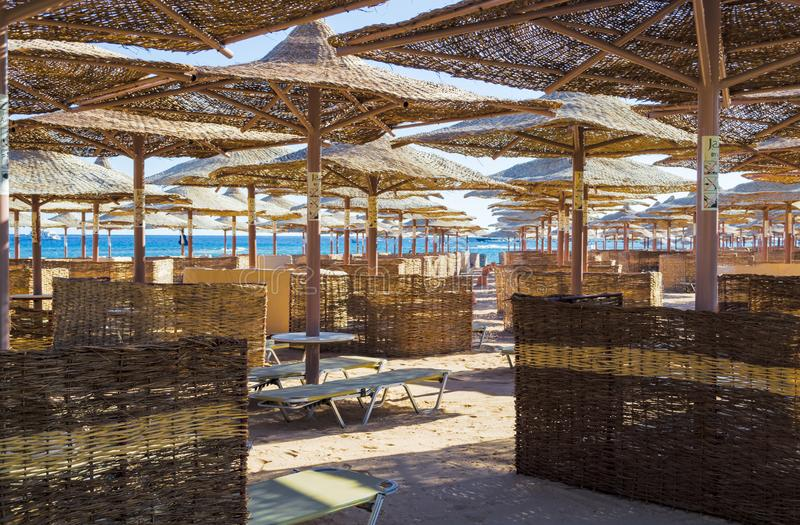 Rzędy słomiani parasole od słońca, rozciąga w odległość na szerokiej plaży na Czerwonym morzu, Makadi zatoka, Hurghada obraz royalty free