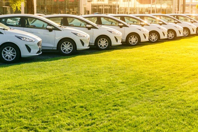 Rząd brandnew biali samochody w zapasie przy przedstawicielstwem firmy samochodowej obraz stock