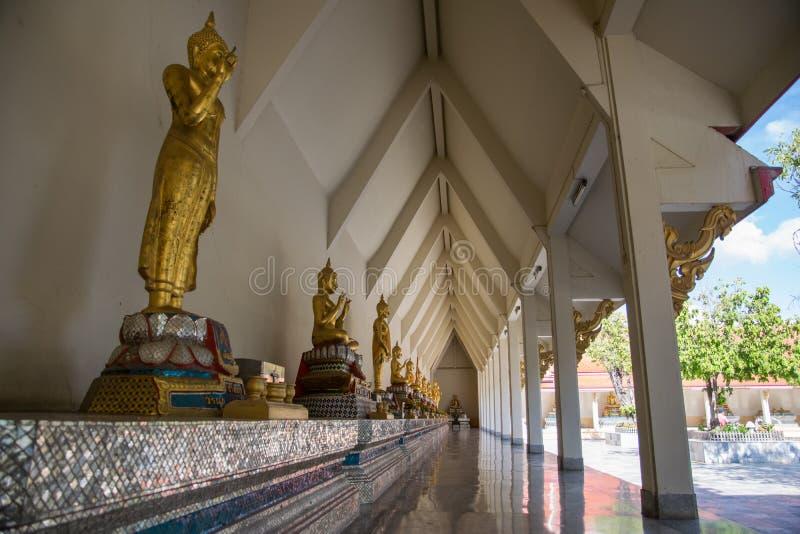 Rząd buddhas fotografia royalty free