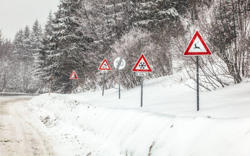 Rząd ostrzegawczy roadsign na niebezpiecznej części lasowa droga podczas zimy miecielicy, Ostrożność - deers, śnieg, uślizgi i zdjęcie stock