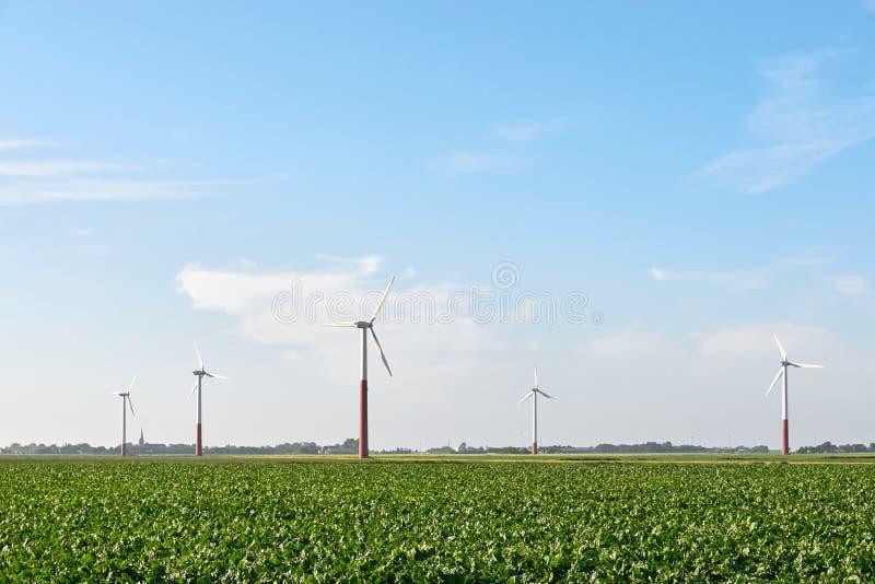 Rząd silniki wiatrowi w agricutural polu fotografia stock