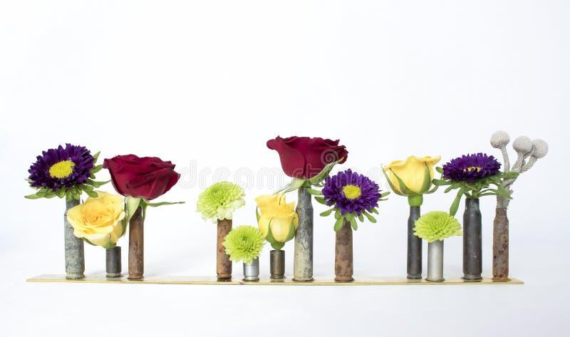 Rząd Wielo- Barwioni kwiaty w pocisk obudowach na Białym Backgrou zdjęcia stock