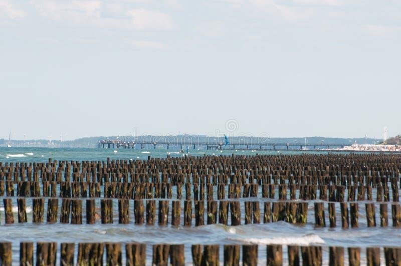 rzędy drewniani słupy w morzu obraz royalty free