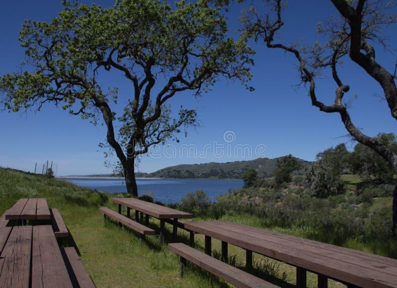 Rzędy Pykniczni stoły przy Cachuma jeziorem w Santa Barbara okręgu administracyjnym obrazy royalty free