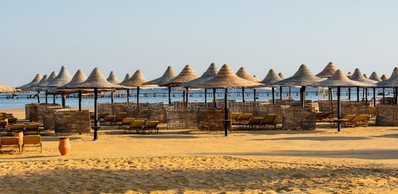 Rzędy słońc sunbeds na plaży i parasols fotografia stock