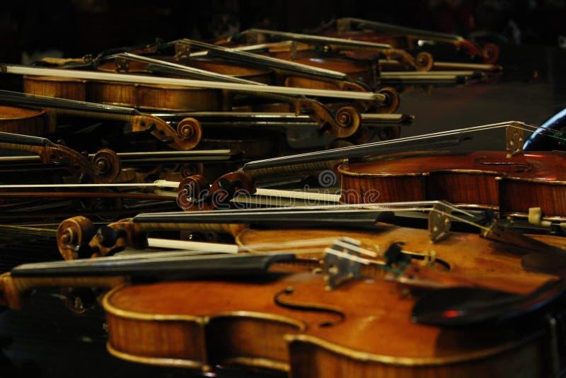 Rzędy skrzypce Skrzypiec szczegóły fotografia stock