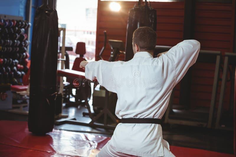 Rzadki widok karate gracza spełniania karate postawa zdjęcie royalty free