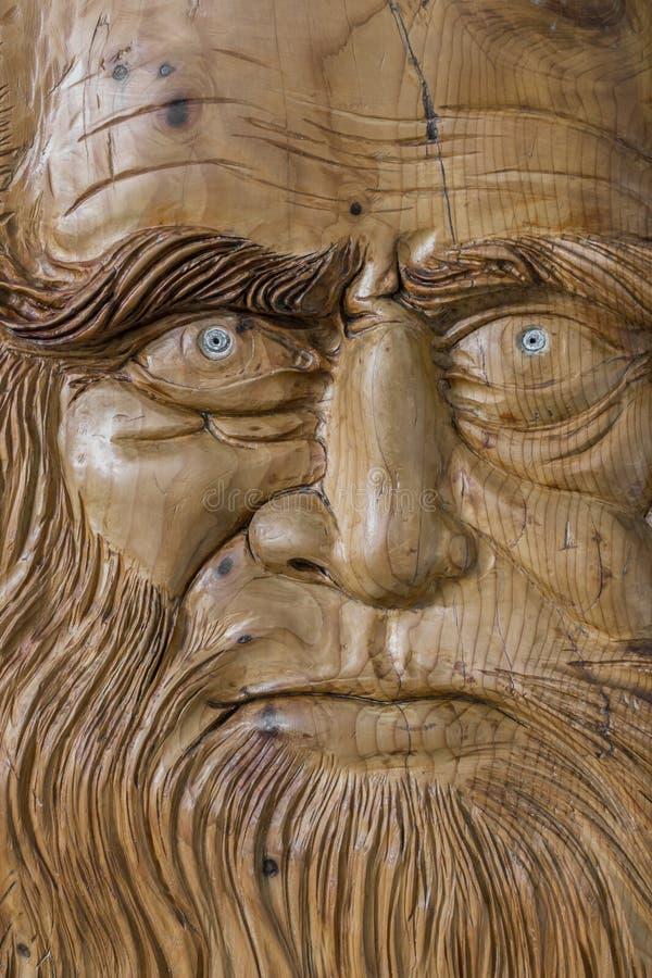 Rzeźbić w drewnie zdjęcie stock