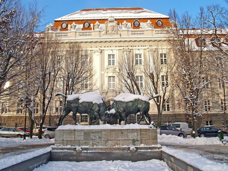 Rzeźbiony skład «walczący żubry 1912 przeciw tłu budynek KGTU Kaliningrad obrazy royalty free