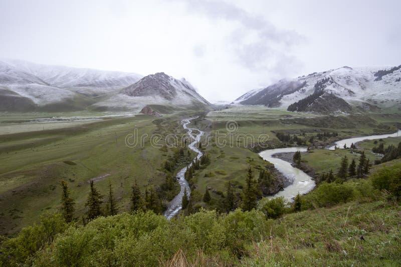 Rzeczni łóżka płynie przez zielonej doliny z górami zakrywać z śniegiem na horyzoncie Podróż Kirgistan zdjęcie royalty free