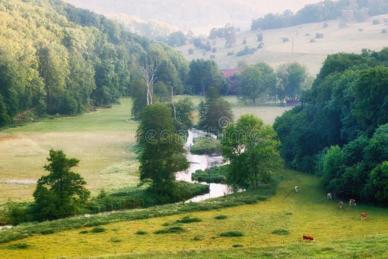 Rzeczny Brenz w Eselsburger dolinny Eselsburger Tal fotografia stock