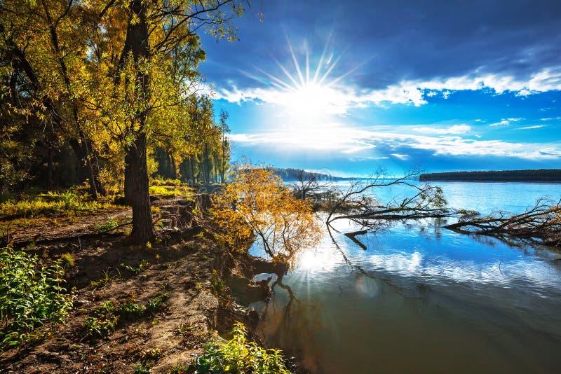 Rzeczny Ob, jesień Zachodni Syberia, Novosibirsk region, Suzun obraz royalty free