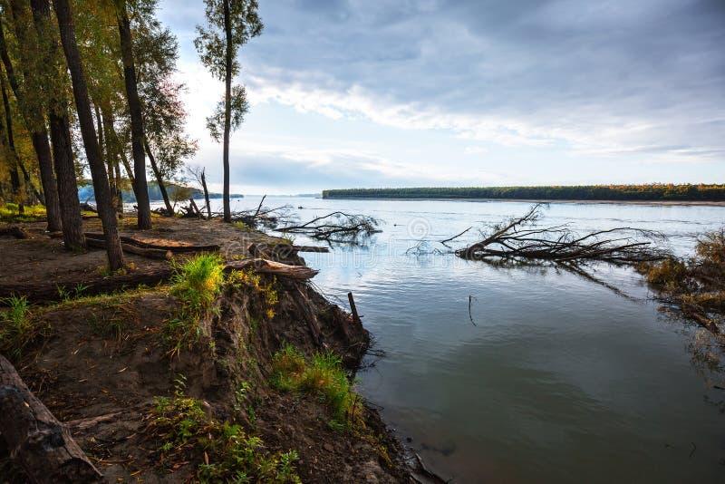 Rzeczny Ob, jesień Zachodni Syberia, Novosibirsk region, Suzun obraz stock