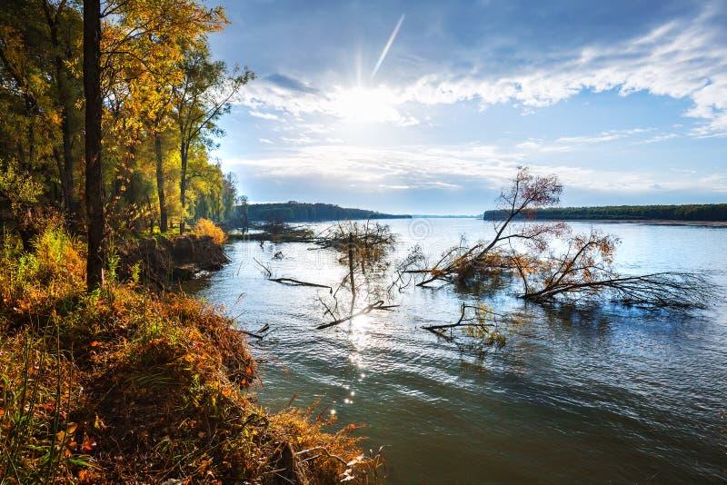 Rzeczny Ob, jesień Zachodni Syberia, Novosibirsk region, Suzun fotografia royalty free