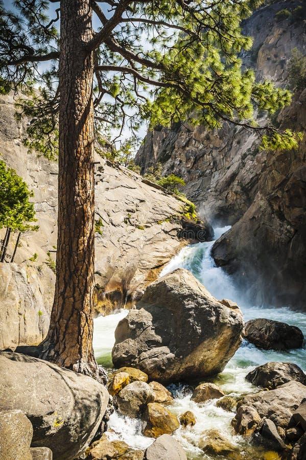 Rzeczny spływanie przez gór Królewiątko jaru park narodowy, obraz stock